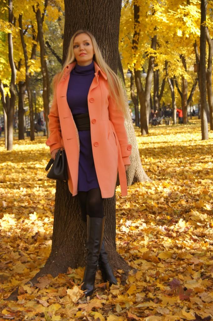 Оранжевый и фиолетовый цвет