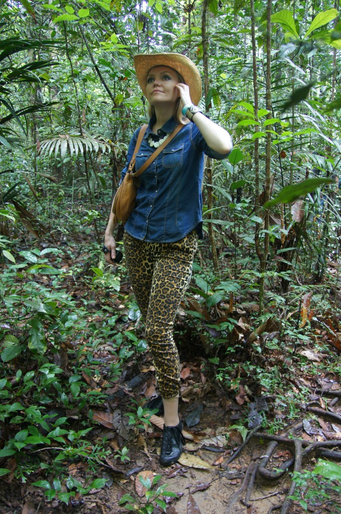 Джунгли Амазонки, Бразилия