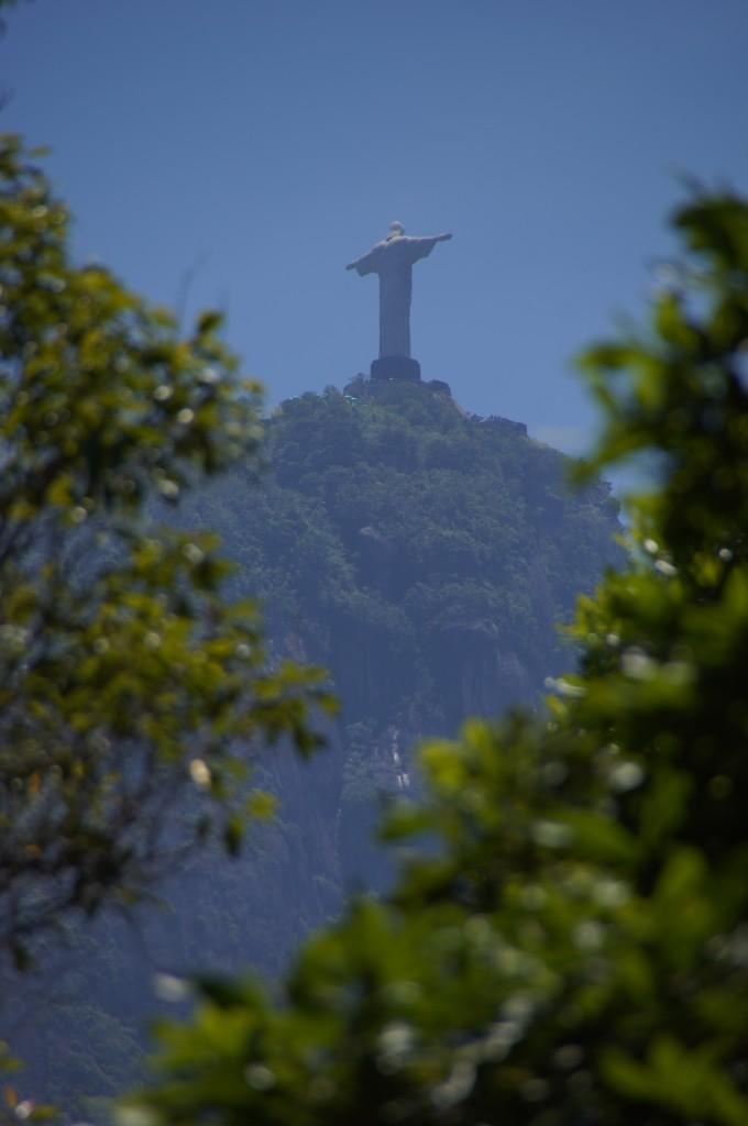 Вид на статую Христа, Ботанический сад, Рио