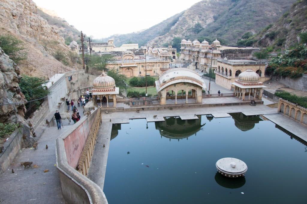 Храм Обезьян. Джайпур