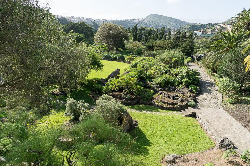 Ботанические сады Вьеха-и-Клавихо на Гран Канарии