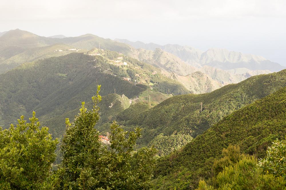 Национальный парк Анага, Тенерифе